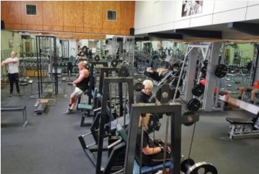 gyms in wollongong