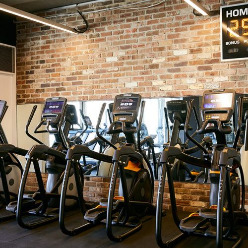 gyms in potts point